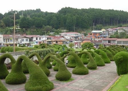 garden on the Zarcero Park Car rental company in alajuela