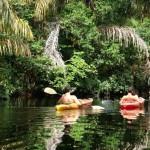 Canales Tortuguero Limon Costa Rica