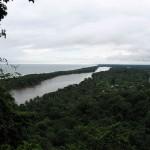 Tortuguero Limon Costa Rica